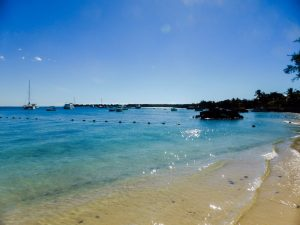 things to do in kingston jamaica